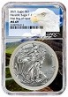 2021 1oz Silver American Eagle NGC MS69 - First Day Issue - Eagle Core
