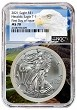 2021 1oz Silver American Eagle NGC MS70 - First Day Issue - Eagle Core